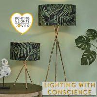 Lighting with Ethics Lighting and Lights