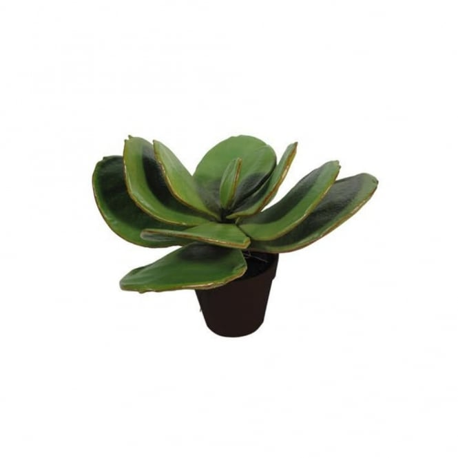 Abigail Ahern LOTUS - Decorative Faux House Plant