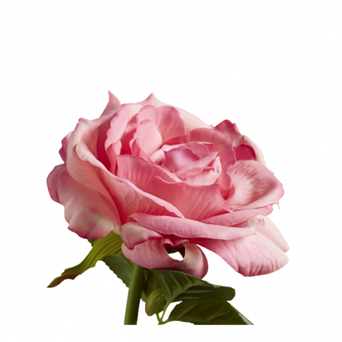 ROSE - Pink Decorative Faux House Flower