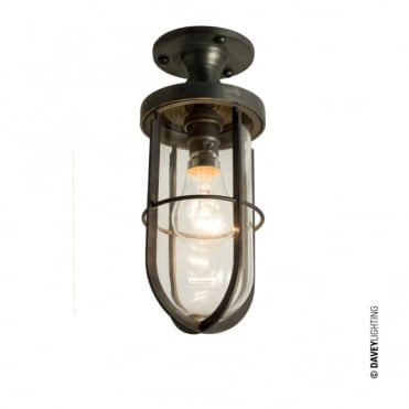 WEATHERPROOF Exterior Flush Ceiling Light with Clear Glass and Metal Cage